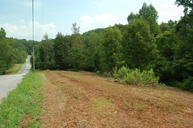 0 Lea View Ln Sale Creek TN, 37373