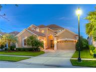 8311 Old Town Drive Tampa FL, 33647