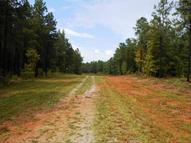 1841 Gum Springs Road Lot #3 Winnsboro SC, 29180
