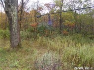 Lot 1 Pangborn Rd Hastings NY, 13076