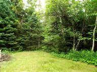 36 Acres On W. Rollingstone  Dr. Pearson WI, 54462