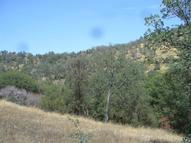 0 Creekside Road Squaw Valley CA, 93675
