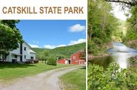5705 River Rd Downsville NY, 13755