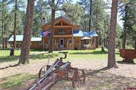 4500 Terry Robinson Road Pagosa Springs CO, 81147