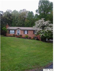 102 Robinhood Pl Madison Heights VA, 24572