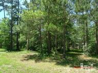 222 River Woods Dr Wallace NC, 28466