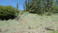 Perry Ave Winthrop WA, 98862