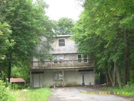 16 Meadow St Livingston Manor NY, 12758