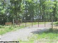 Lot 4 Rich Mountain Estates Mabie WV, 26278