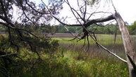 Lot 19 Mission Dr (Tt2) Waycross GA, 31503