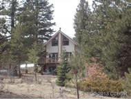 853 Basin Dr. Cotopaxi CO, 81223