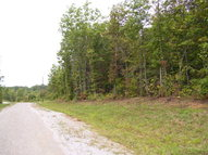 Lot 80a Parkstown Road Wilder TN, 38589