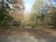 Lot 1 Knight Road Jeffersonville GA, 31044