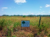10.19 Acres Cr 7711 Devine TX, 78016