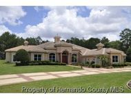 9460 Bearfoot Trl Weeki Wachee FL, 34613