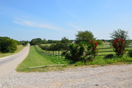 198 Keefer Road Pottsboro TX, 75076