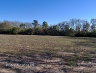 Lots 333/334 5 Acres Mossey Oaks S/D Georgetown GA, 39854