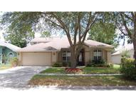 16838 Harrierridge Place Lithia FL, 33547