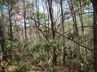 Lot 42 Stonegate Way Townsend TN, 37882