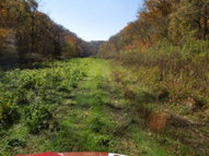 316.92 Ac. Pine Lick Road Whitleyville TN, 38588