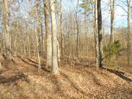 Lot 57 Chris Hill Drive Seymour TN, 37865