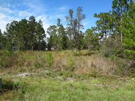 Skyline Dr Altha FL, 32421
