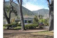 8910 Soda Bay Road #B1 Kelseyville CA, 95451