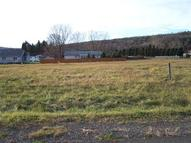 Lot 15 Brookwood Hills Drive Big Flats NY, 14814