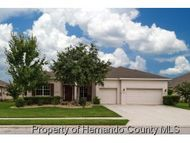 13501 Hunters Point St Spring Hill FL, 34609