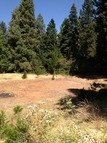 1.4 Acre Red Hook Trail Pollock Pines CA, 95726