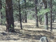 Lot 2 Cr A-31 Hermits Peak Ranch Phase 2 Las Vegas NM, 87701