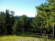 161 Woodrock Way Divide CO, 80814
