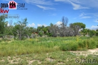 Tbd Cottonwood Drive Lot 4 Grand Junction CO, 81506