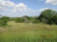 Cr 3033 Orange Grove TX, 78372