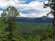688 Woodrock Way Divide CO, 80814