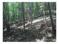 Lot 27  Robinhood Road Asheville NC, 28804