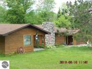 13216 Sw Coster Fife Lake MI, 49633
