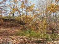 0 High Meadow Trail Frankfort MI, 49635