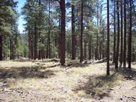 2d Coconino Forest Rd.137a Happy Jack AZ, 86024