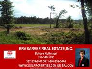 Tbd 20 Acres, Smyrna Road Deridder LA, 70634