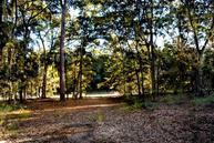 Lot 1 Palmetto Road Edisto Island SC, 29438