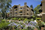 Avalon Walnut Ridge Apartments Walnut Creek CA, 94597