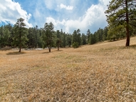 29505 Sanger Drive Evergreen CO, 80439