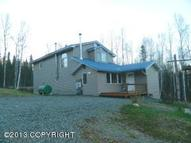 10114 N Buckingham Palace Road Willow AK, 99688