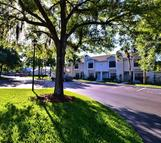 5100 Burchette Road #3804 Tampa FL, 33647