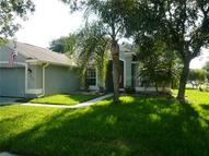 19148 Cherry Rose Circle Lutz FL, 33558