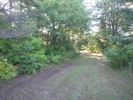 15.15 Acre Cr 399 Newberry MI, 49868