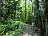 Lot 11 West Meadow Rd Bradford NH, 03221