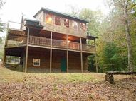 2236 Pole Coffee Circle Ellijay GA, 30536