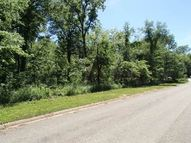 Lot 25 East Mitchel Drive Plano IL, 60545